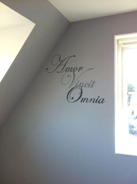 amorvoncitomnia muurschildering